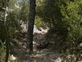 Gorges de Regalon104