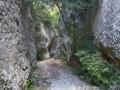 Gorges de Regalon13