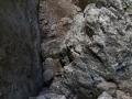 Gorges de Regalon37