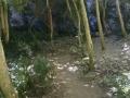 Gorges de Regalon49