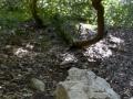 Gorges de Regalon56
